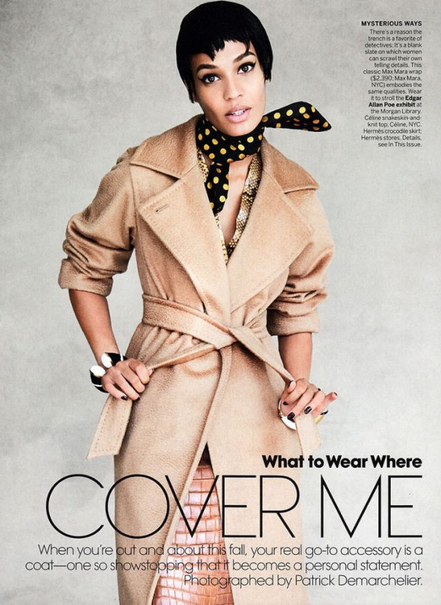 joan-smalls-for-vogue-us-september-2013-1